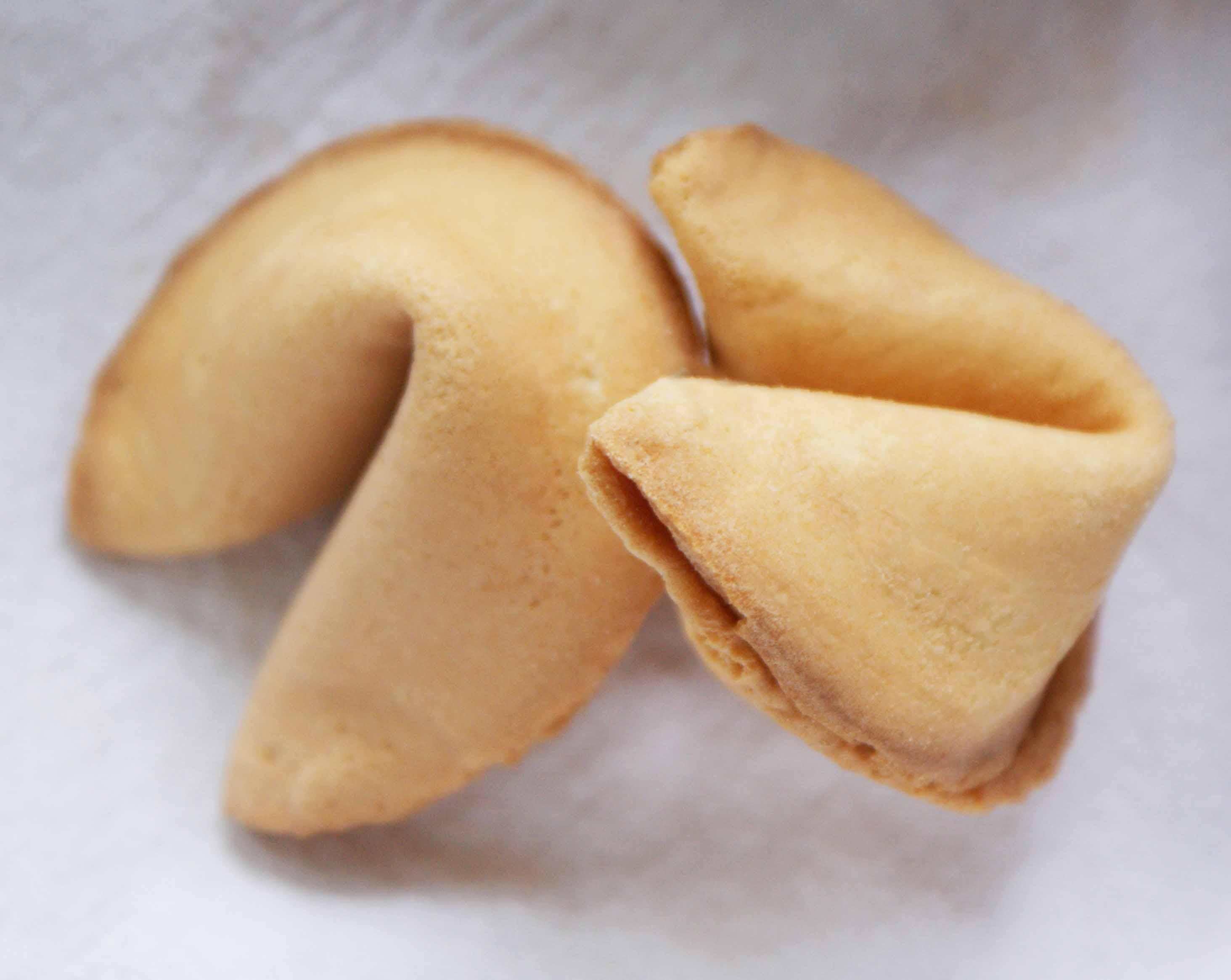 Fortune-cookies-2.jpg